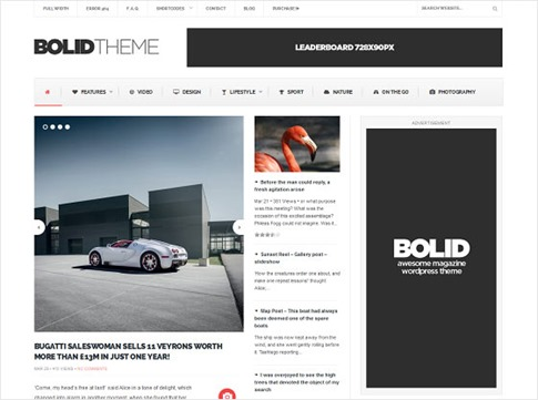 Theme flexible para WordPress