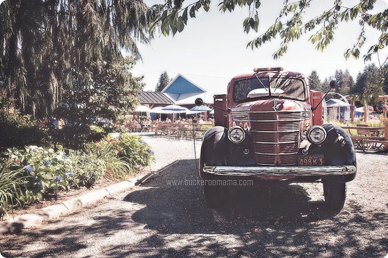 Old-truck-(1)