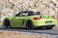 SpeedART-Porsche-Boxster-981-21[2]