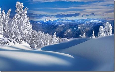 peisaje de iarna