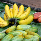 Verschiedene Bananenarten. © Foto: Marco Penzel | Outback Afica Erlebnisreisen