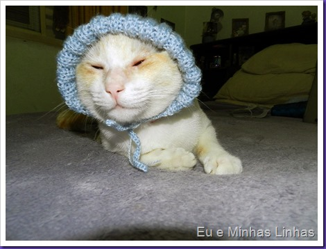 Touca para Gato1