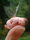 baby-fairy_poze mobil