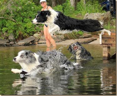 Dogs-Lake-070312 (60)e