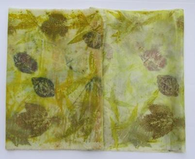 4 Goldrutenblätter, Blutpflaumenblätter, Ahornblätter