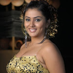 Namitha Hot (15).jpg