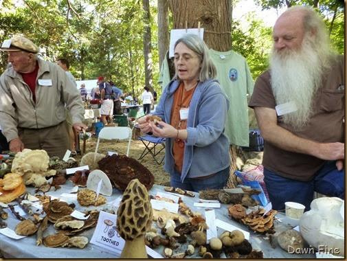 Mushroom festival_046