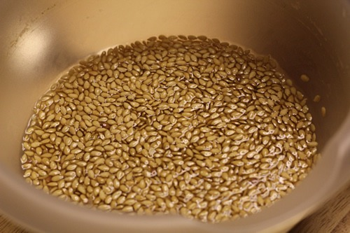 sourdough-seed-bread_1681