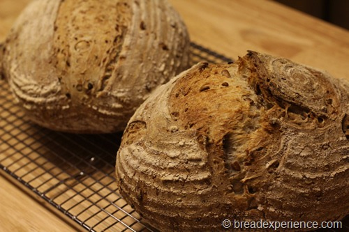 sourdough-seed-bread_1720