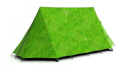 grass0003_ed758fd0d271269b78e9d4c6964d7812
