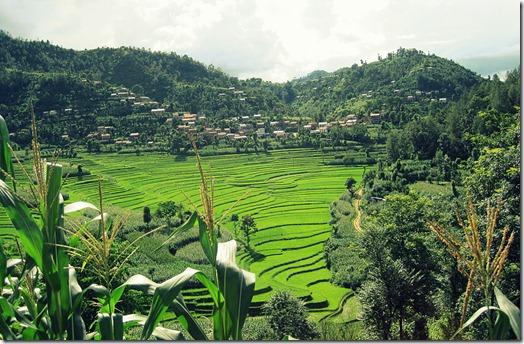 Balthali-View