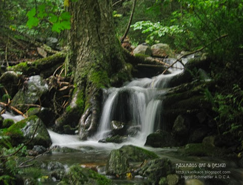 awausee-trail1