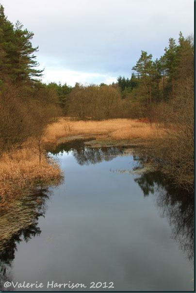 2-Penninghame-pond