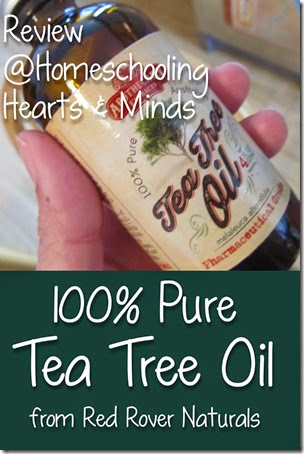 Review of 100% Pure Tea Tree Oil from Red Rover Naturals at Homeschooling Hearts & Minds