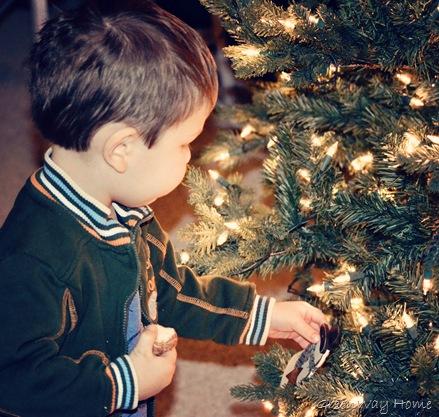 Christmas Decor 034cosmo