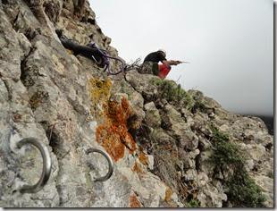 Quimicos en Roque de Enmedio