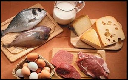 dieta_hiperproteica