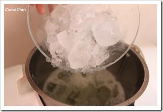 7-granissat  llimona cuinadiari-6