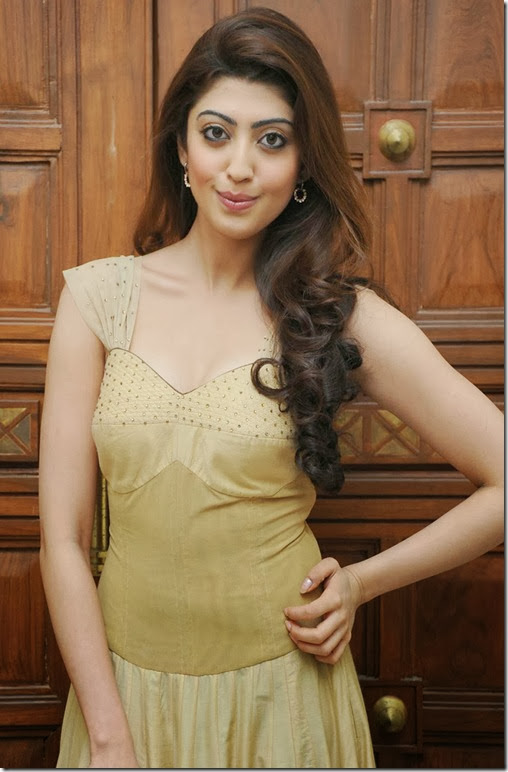 Pranitha-subhash-latest-gorgeous-photos