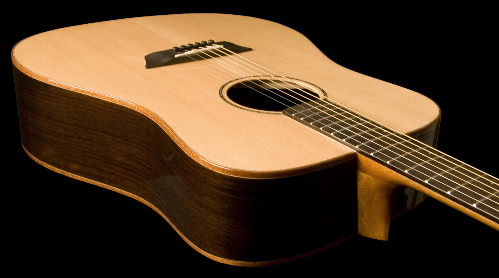 Washburn | NAMM 2011 | Solid Wood Acoustic Series