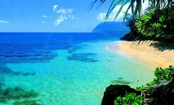 صور هاواي8
