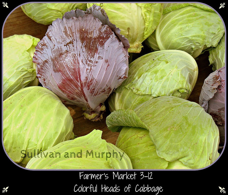 picmonkey cabbages