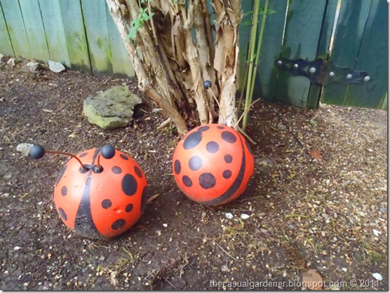 Bowling Ball Lady Bugs