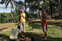 pinoyecofarm december _0152.JPG