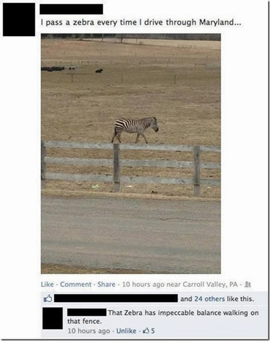 funny-facebook-comments-28
