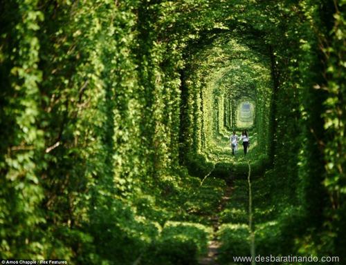 tunel do amor ucrania desbaratinando  (1)