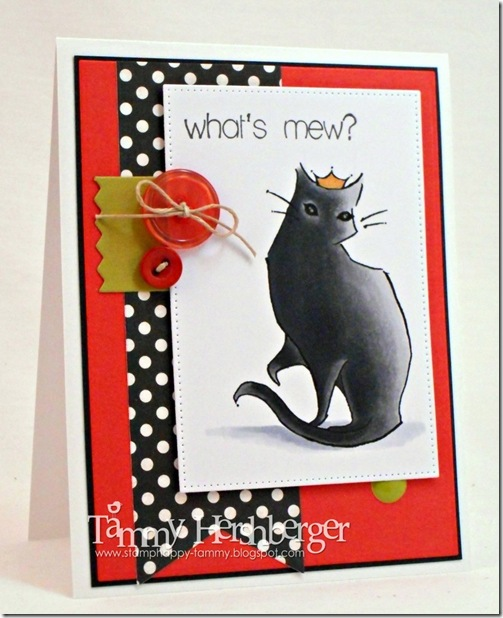 A Day for Daisies Pretty Black Cat by Tammy Hershberger