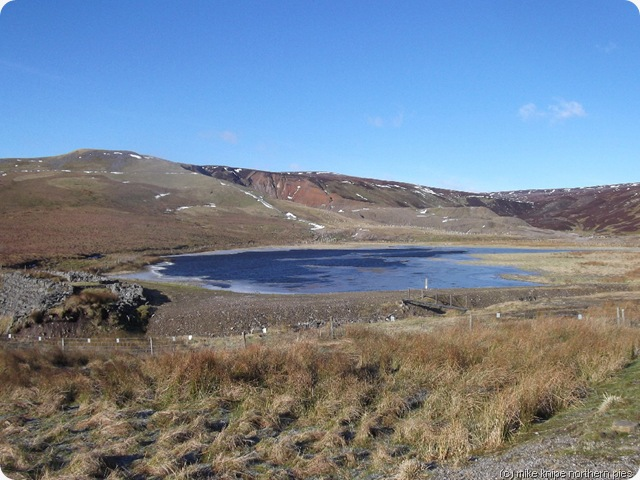 fish lake pond