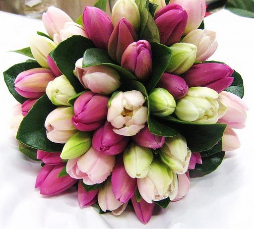 Tulips Wedding Decorations, Outdoor Wedding, Fresh Wedding, Tulips Decoration Ideas for Wedding