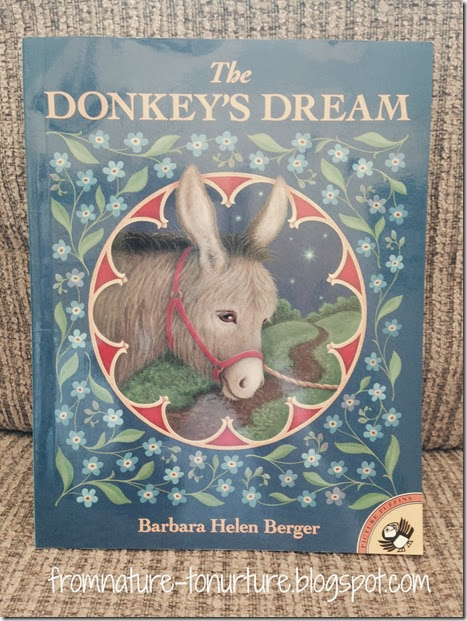 Donkey Dream