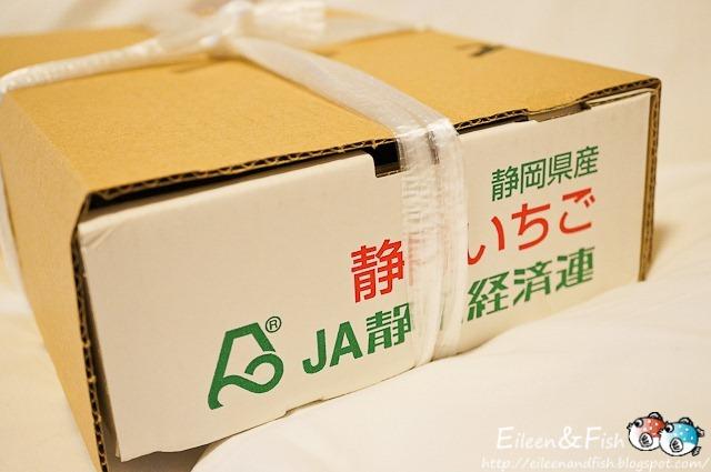 jp-17-8