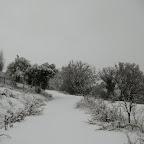 2012-02-01.jpg