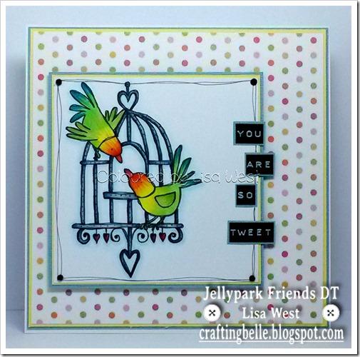 Love Birds Cage (1)