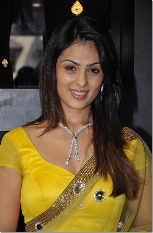 Anjana-Sukhani-veryhot in saree2