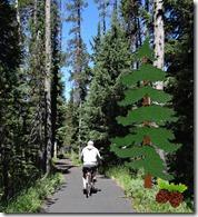 Lake bike ride and chipmunks 027 w tree PE