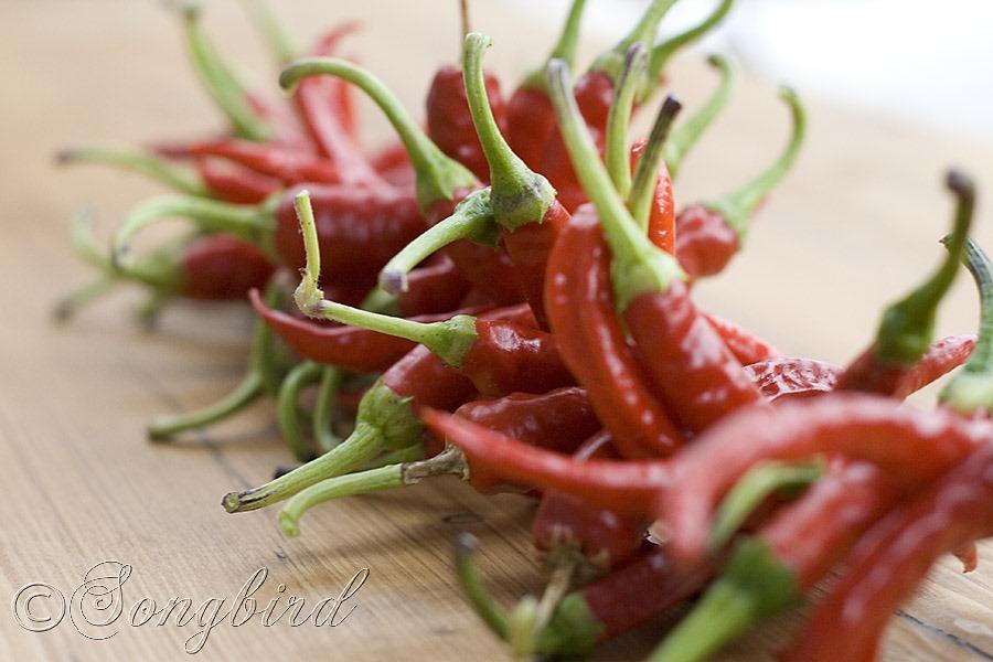 [String-Garland-Red-Peppers-13.jpg]