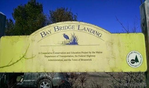 3-24-15 Bay Bridge landing