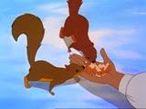 1-10 les écureuils