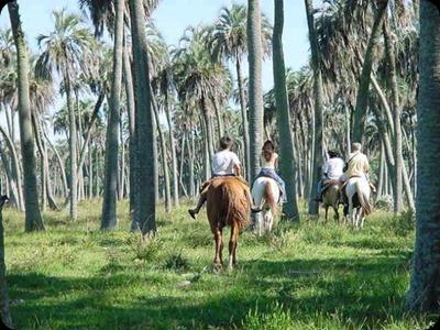 el_palmar_paseo_a_caballo