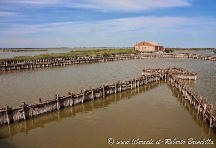 15_2014-05-21_Valli di Comacchio_Delta Po (44)