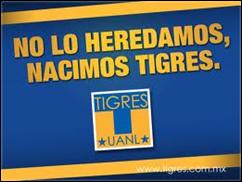Tigres, lñídeo del torneo Clausura 2013 al t´rmino de la Fecha 12