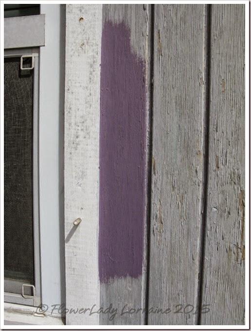 03-09-peruvian-violet