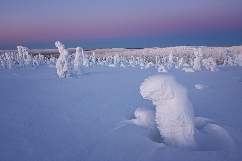 Sentinels-of-the-Arctic-1