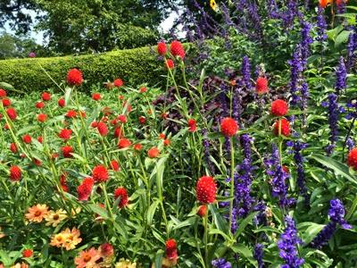 2014 08 31 Central Park formal garden