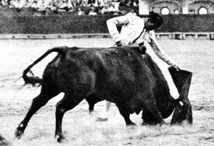 1935-08-07 (p. MG) Ortega Valencia Miura (2)