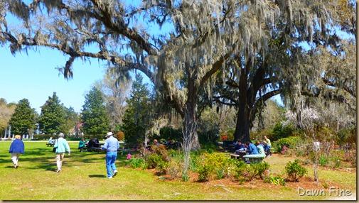 Magnolia Plantation_212